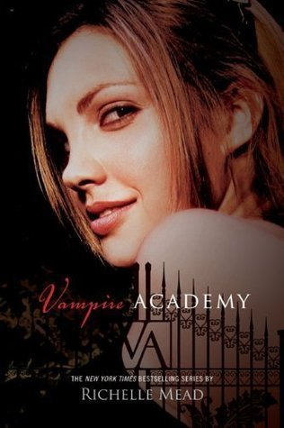 Vampire Academy series by Richelle Mead thumbnail