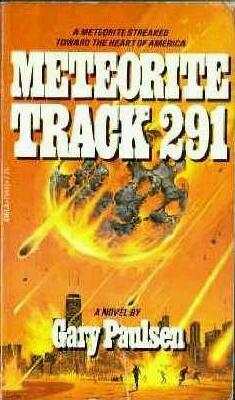 Meteorite Track 291