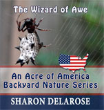 the-wizard-of-awe-an-acre-of-america-backyard-nature-series