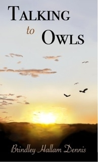 Talking to owls
