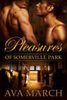 Pleasures of Somerville Park (Somerville Park, #1.5)