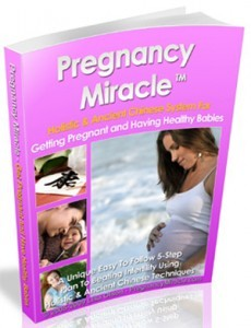 Image result for pregnancymiraclebook