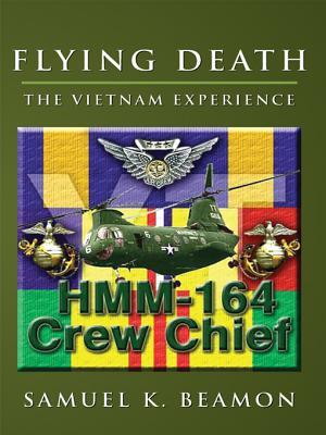 Flying Death: The Vietnam Experience