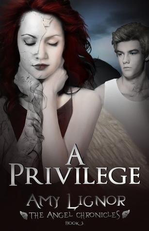 Ebook A Privilege by Amy  Lignor DOC!