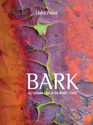 Bark by Cedric Pollet