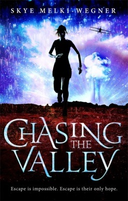 Chasing the Valley (Chasing the Valley #1)
