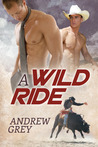 A Wild Ride (The Bullriders, #1)