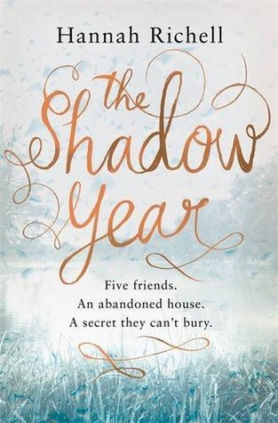 The Shadow Year by Hannah Richell thumbnail