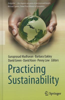 Practicing Sustainability EPUB