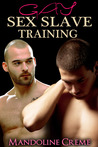 Gay Sex Slave Training (Reluctantly Dominated by Barbarians,#1)