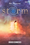 Storm by Brigid Kemmerer