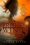 Broken Wings (Hidden Wings, #2)