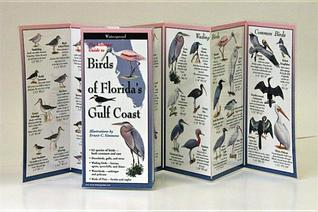 Ultimate Guide to Florida's Gulf Coast Birds PDF Free Download