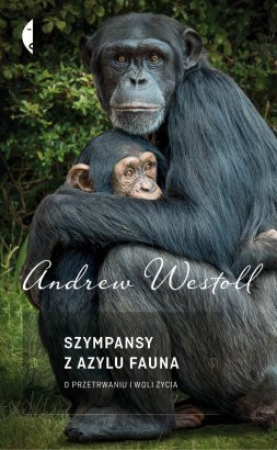 chimps of fauna sanctuary westoll andrew