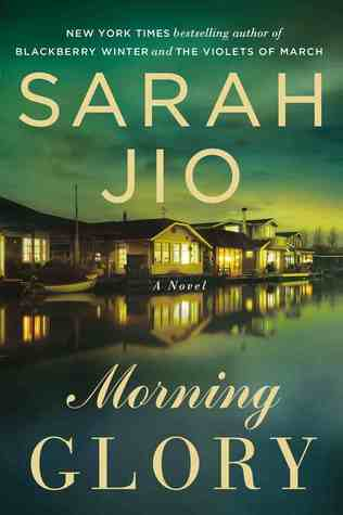 Image result for morning glory sarah jio