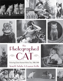 The Photographed Cat