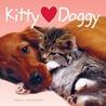 Kitty Hearts Doggy