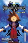 Kingdom Hearts by Shiro Amano