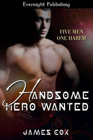 handsome-hero-wanted