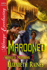 Marooned (Wicked Missions, #2)
