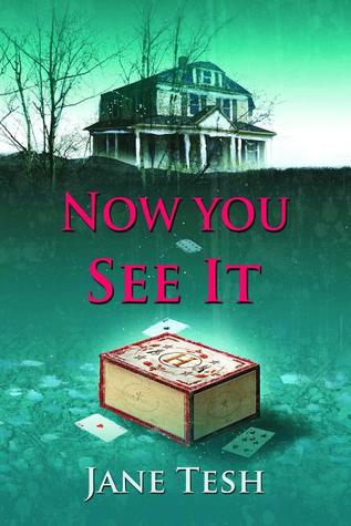 Now You See It (Grace Street Mystery, #3)