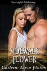 Sidewalk Flower (Sin Pointe, #1)