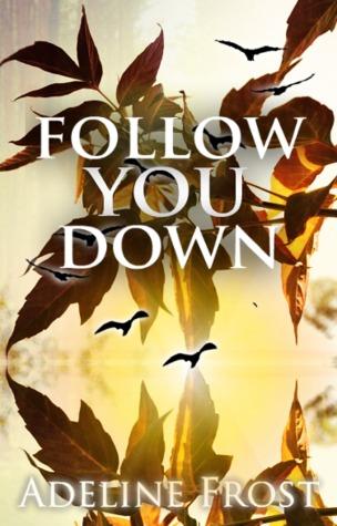 follow-you-down-follow-1