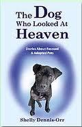 the-dog-who-looked-at-heaven
