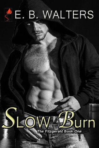Slow Burn(The Fitzgerald Family 1)