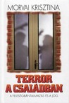 Terror a családban – A feleségbántalmazás és a jog by Krisztina Morvai