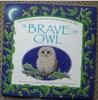 The Brave Little Owl