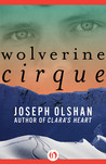 Wolverine Cirque by Joseph Olshan
