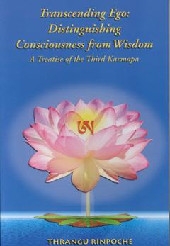 Transcending Ego: Distinguishing Consciousness from Wisdom ( Tib. Namshe Yeshe Gepa) of Rangjung Dorje, the Third Karmapa