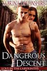 Dangerous Descent (Love in the Labyrinths #1)