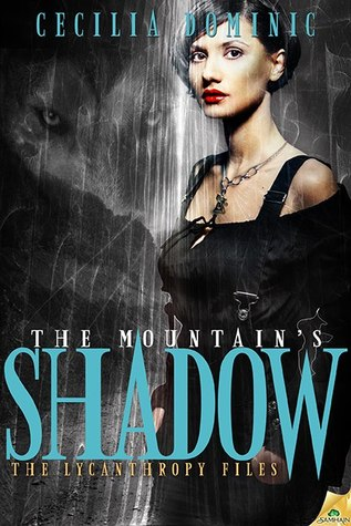 the-mountain-s-shadow