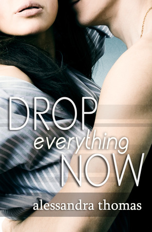 Drop Everything Now(Picturing Perfect 3)