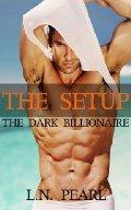 The Setup  (The Dark Billionaire, #1)