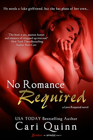 No Romance Required (Love Required, #3) by Cari Quinn