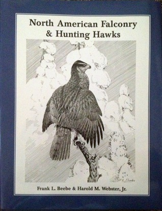 North American Falconry & Hunting Hawks