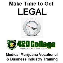 Medical Marijuana Delivery Business Guide eBook