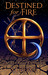Destined for Fire (Alyx Rayer Chronicles, #3) by S.J. Pierce