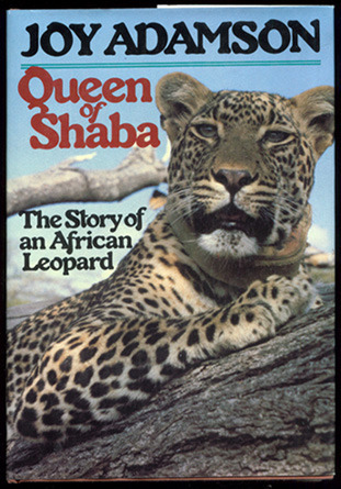 queen-of-shaba-the-story-of-an-african-leopard