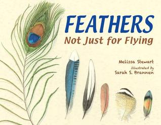 Feathers: Not Just for Flying