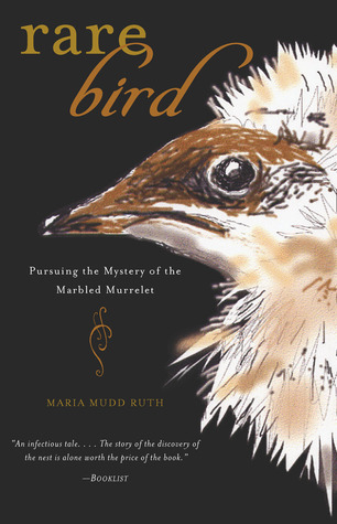 rare-bird-pursuing-the-mystery-of-the-marbled-murrelet