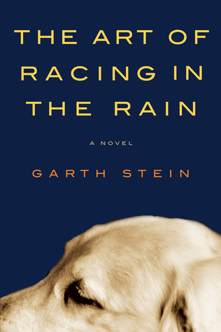 Image result for the art of racing in the rain book