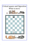 The most important Chess Pattern - Critical Squares by Rodolfo Pardi