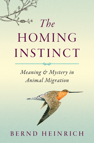 Ebook The Homing Instinct: Meaning and Mystery in Animal Migration by Bernd Heinrich TXT!