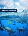 An Ocean Adventure