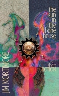 The sun in the bone house by Jim Mortimore