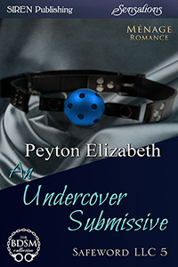 An Undercover Submissive